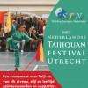 stn-festival-2014